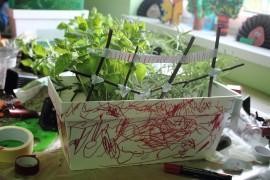 Mój kawałek ogrodu, Jola Jastrząb